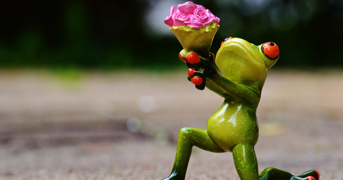 A clay frog figurine on one knee with a dozen roses held high